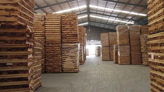 Kho gỗ tẩm sấy hoàn thiện
