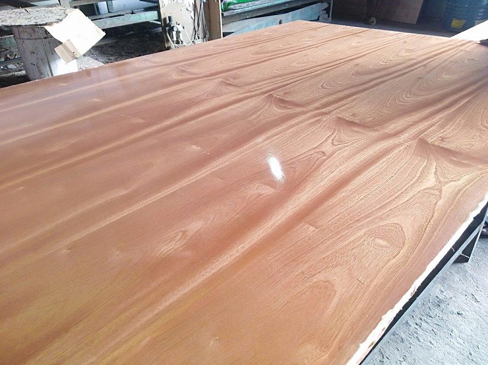 Ván gỗ veneer gỗ Xoan phủ keo bóng